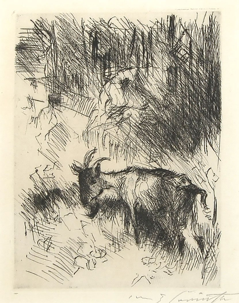 LOVIS CORINTH ETCHING WITH GOAT