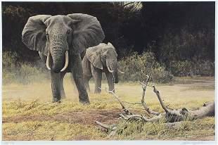 BATEMAN ARTIST PROOF ELEPHANT COW AND CALF
