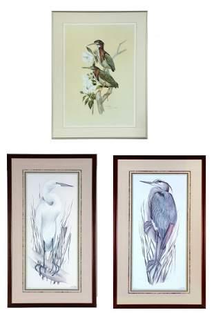 3 ART LEMAY FLORIDA WATERBIRD PRINTS