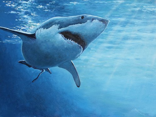 235: BARRY NEHR GREAT WHITE SHARK PAINTING