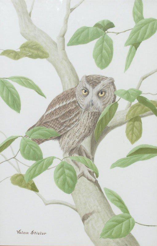 398: VALAN STIELER PAINTING SCREECH OWL