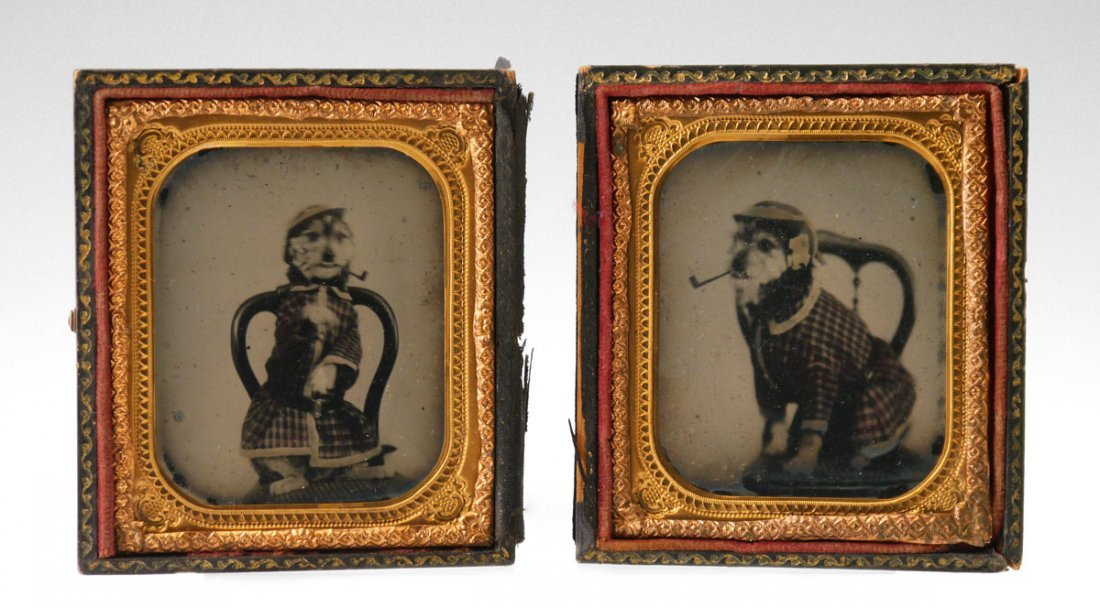 PAIR 19TH CENTURY DOG SMOKING AMBROTYPES