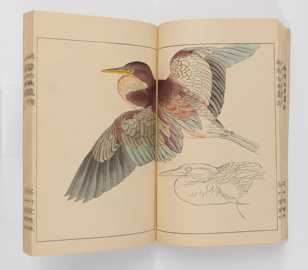 EISHO HYACHUKO GAFU JAPANESE BIRD STUDIES BOOK
