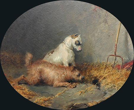 4: G. ARMFIELD PAINTING 2 TERRIERS BY HOLE