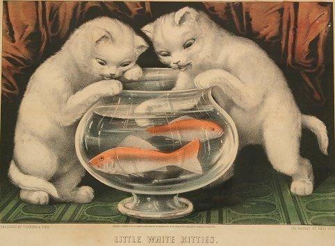1437: 4 CURRIER & IVES VINTAGE CAT LITHOGRAPHS - 5