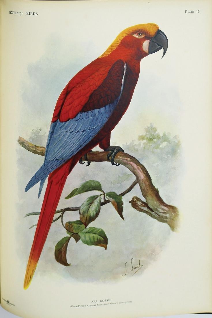 Extinct Birds, Rothschild, Rare Book - 3
