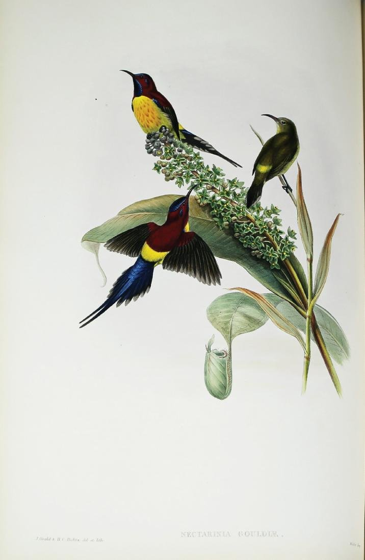 Birds of Asia, Gould, First Edition, Rare Book - 3