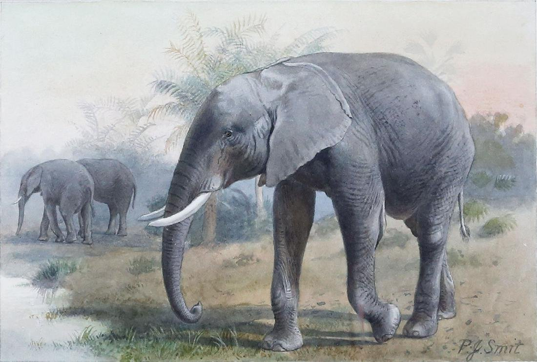 Charming Watercolor of an African Elephant