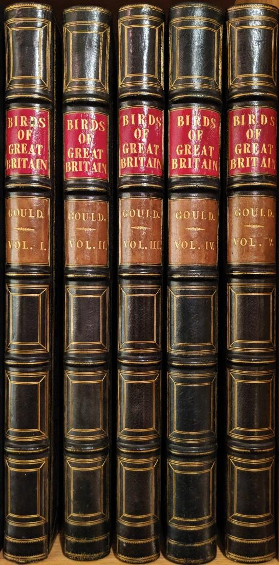 Gould Birds of Great Britain First Edition
