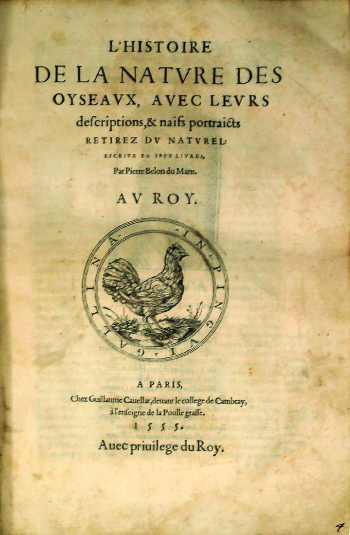 Belon Rare Ornithology Book