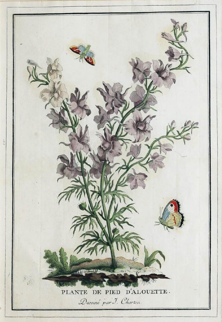 Charton hand colored engraving