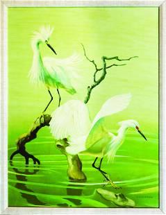 Peterson Snowy Egret