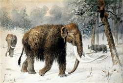 Smit Original Early Drawing of a Mammoth - Ushing in an