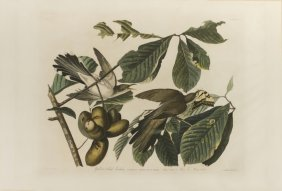 John James Audubon, Plate 2: