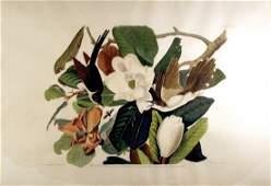 Black-Billed Cuckoo, Plate 32