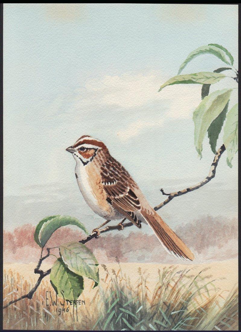 Steffen Watercolor of Lark Sparrow