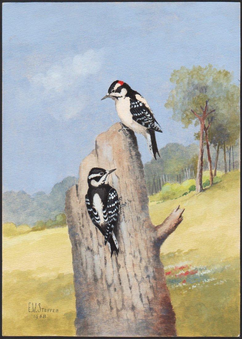 Steffen Watercolor of Downy Woodpecker