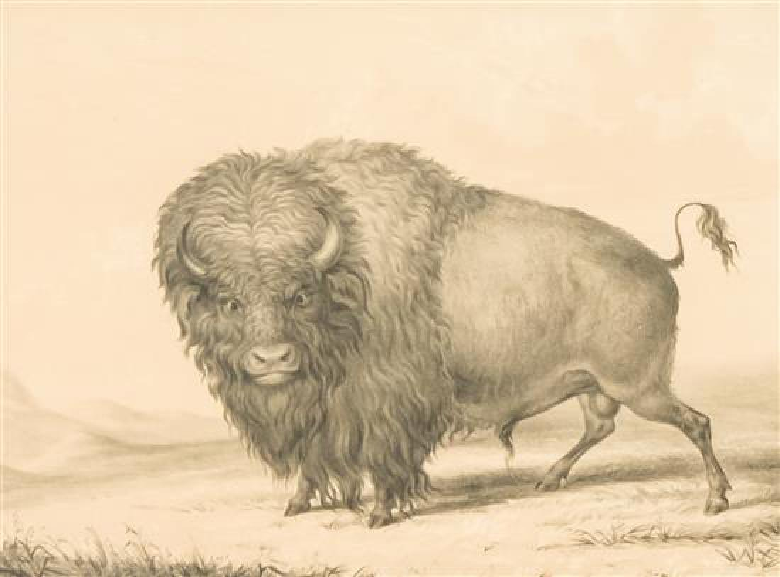 After George Catlin, (American, 1796-1872),