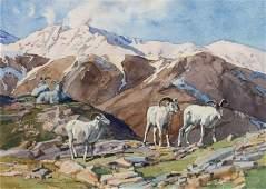 Stephen C. Elliott (American, b. 1943) Big Horn Sheep