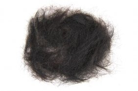 66: A Large Quantity of Elvis Presley's Hair,