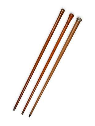 A Group of Three Walking Sticks