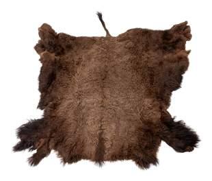 A Buffalo Hide Rug