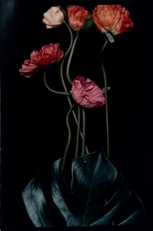 Lialia Kuchma (20th century) Three Poppies One and
