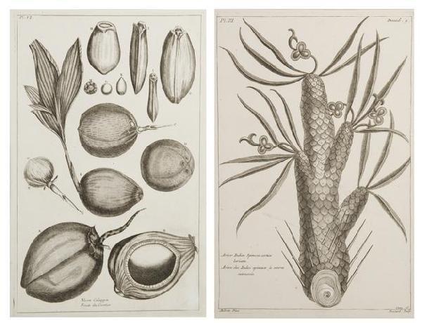 17: BUCHOZ, PIERRE JOSEPH. 8 engraved prints from Histo