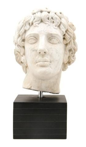 11: A Continental Carved Marble Bust, Height 13 1/2 inc