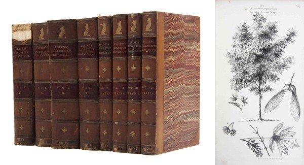 3: LOUDON, JOHN CLAUDIUS. Arboretum et Fruticetum Brita