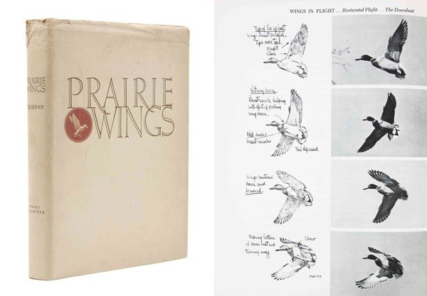 11: QUEENY, EDGAR. Prairie Wings: Pen and Camera Flight