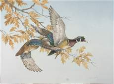 Charles Murphy, (American, 20th Century), Wood Duck