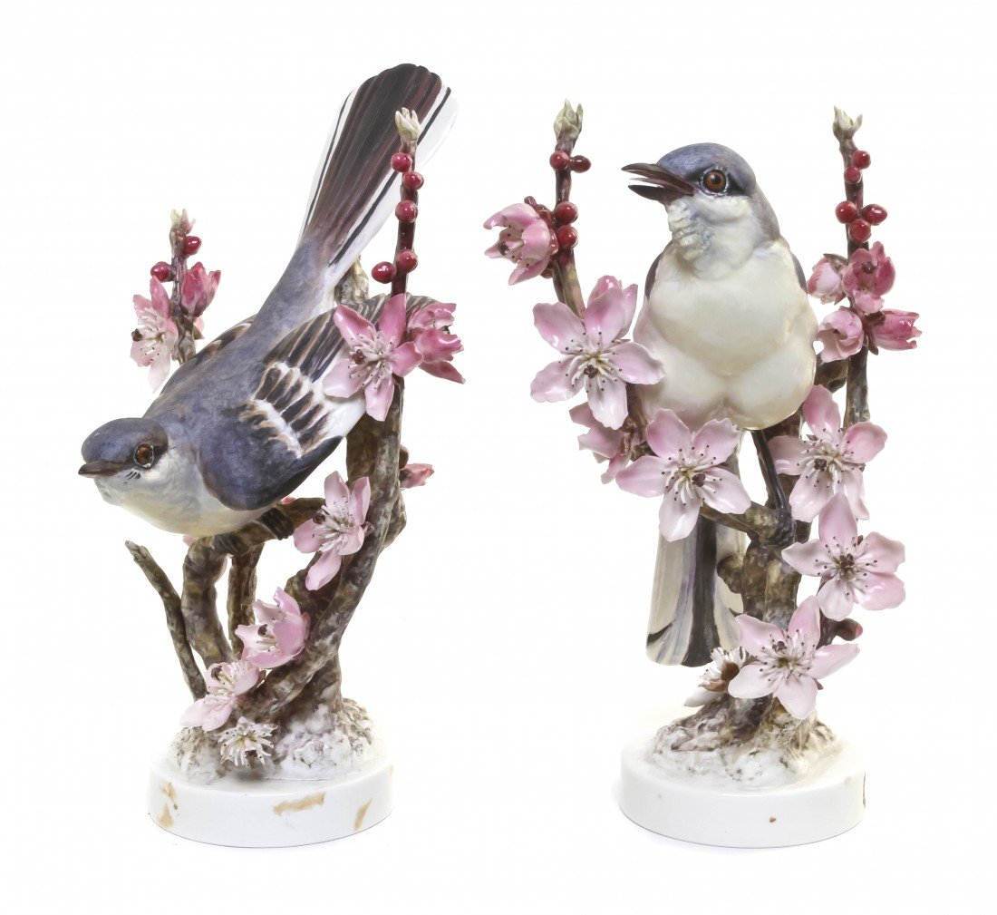884: A Pair of Royal Worcester Dorothy Doughty Birds, M