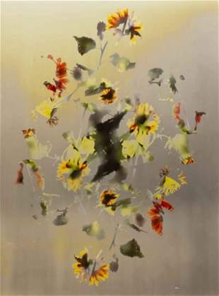 Adam Fuss, (American/British, b. 1961), Untitled, 1994