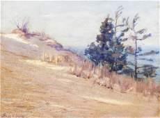 Frank Virgil Dudley, (American, 1868-1957), Sandhill