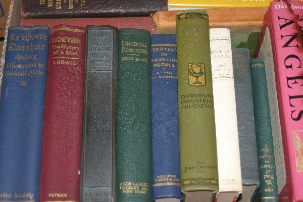 4579: A Large Collection of Books,