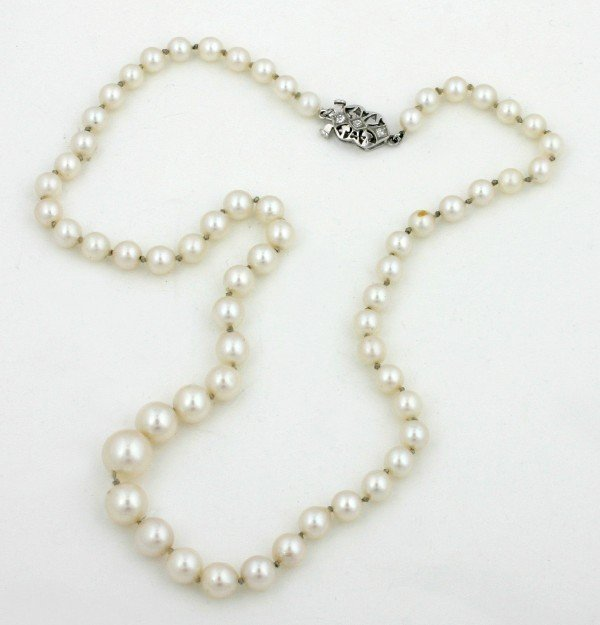 14: A Lady's Single Strand Graduated Cultured Pearl Nec