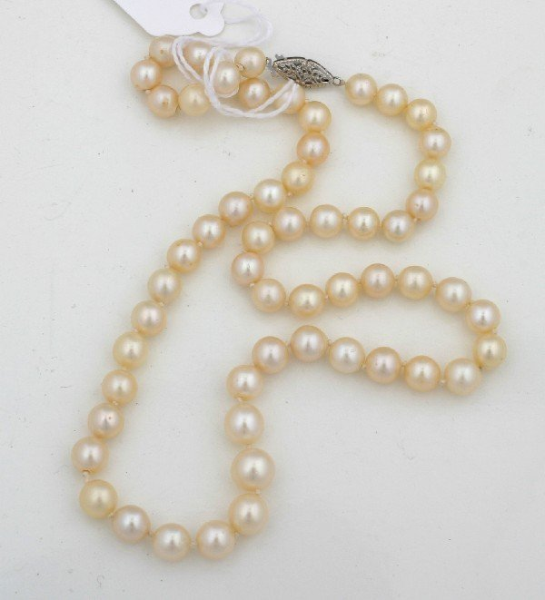 15: A Lady's Single Strand Cultured Pearl Necklace, Len