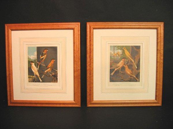 9: Decorative art prints of canaries