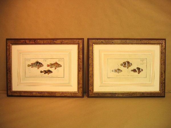 17: Decorative art prints of fish