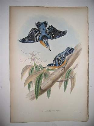 1021: Birds of Asia by John Gould