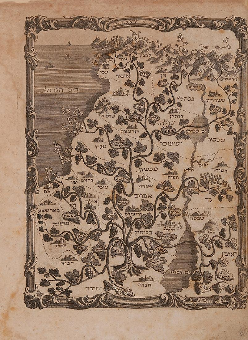 """The Grapevine Map"" - Map of Palestine with Grapevines"