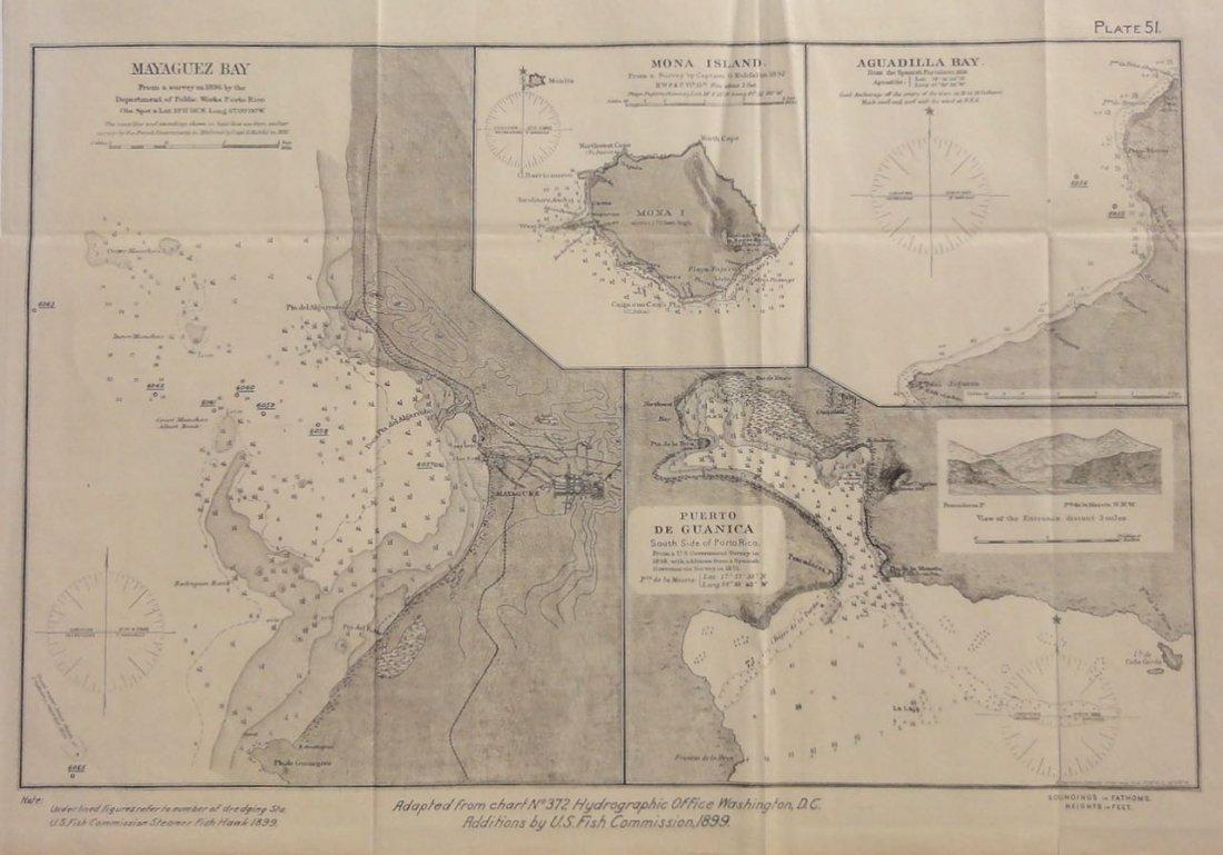 Puerto Rico: Mayaguez, Mona Island, Aguadilla, 1855