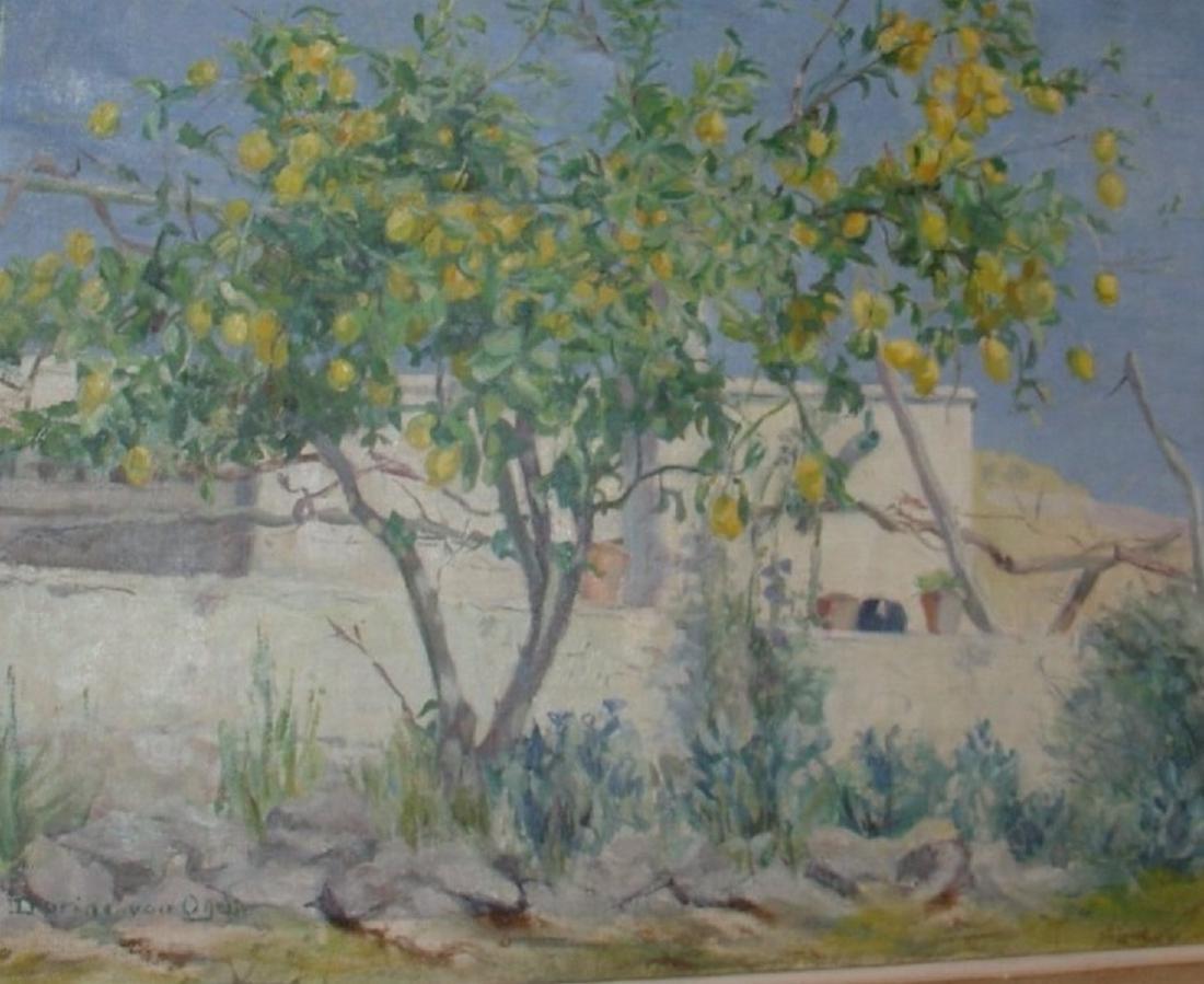 Dorine VAN OYEN (1887-?))  Les citronniers  Huile sur