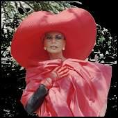 Alexandre BARTHET (Né en 1962) Sophia Loren