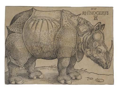 2020024: ALBRECHT DÜRER Rhinoceros.