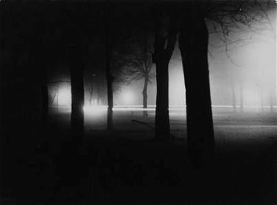 2026133: FEININGER, LYONEL (1871-1956) Trees in the Bur