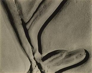 EDWARD WESTON (1886-1958) Eroded Rock.