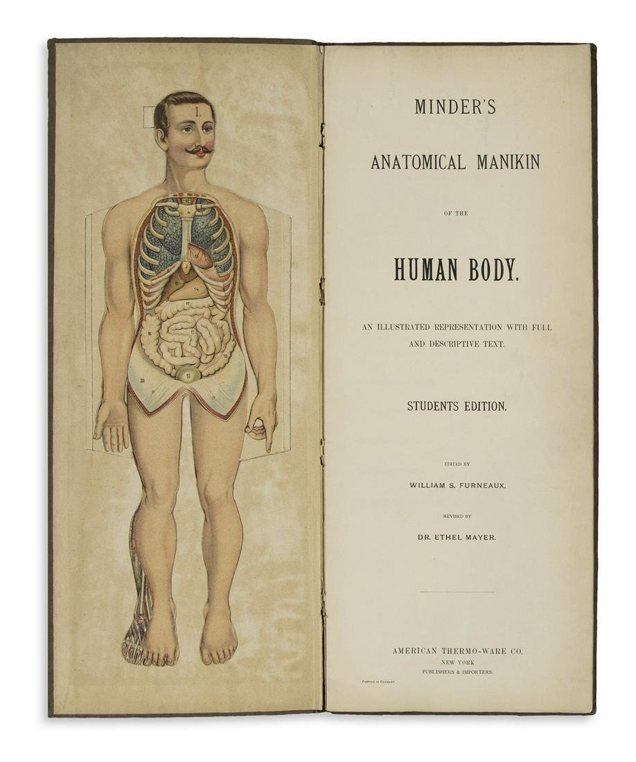 (ANATOMY.) Furneaux, William S.; and Mayer, Ethel.