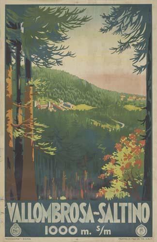 Poster VALLOMBROSA-SALTINO. 39x25 inches. Novi